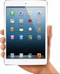 Apple iPad mini 16 Gb Wi-Fi+4G