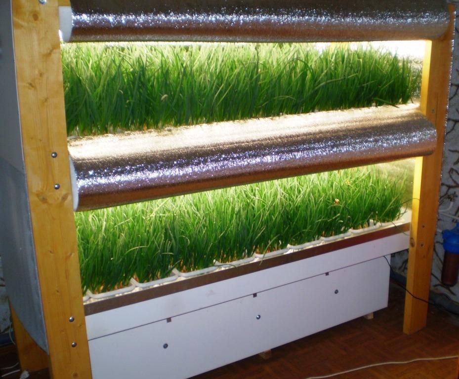 Оборудование выращивания в помещении 946